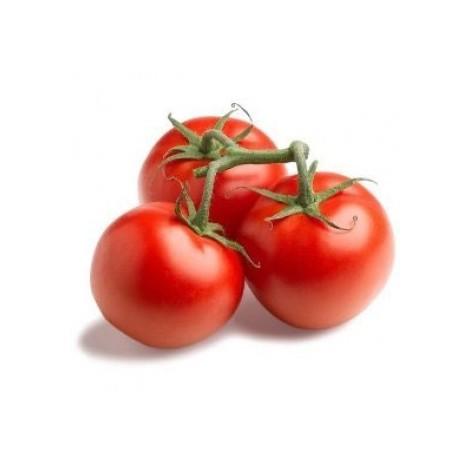 био домати червени Моравско село